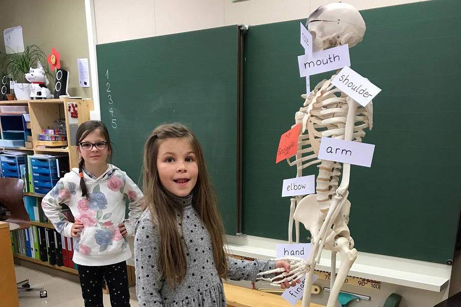 My body – 3. Klasse Spiringen