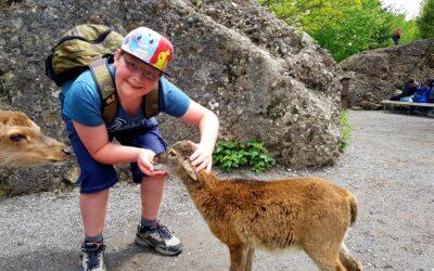 Spezialprogramm Dienstag: Tierpark, 5./6. Klasse Spiringen